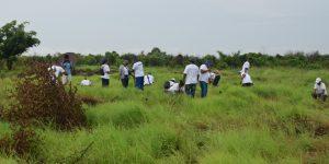 Campagne de reboisement dans le Boeny: le personnel du BIANCO Mahajanga s'y met.
